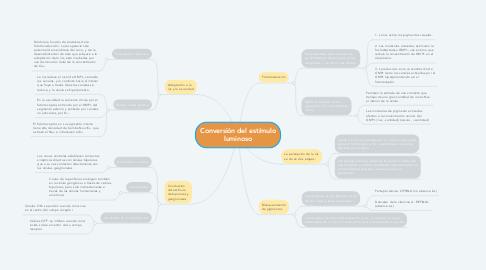Mind Map: Conversión del estímulo luminoso