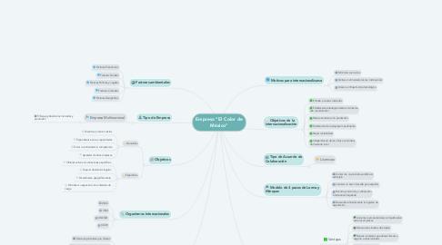 """Mind Map: Empresa """"El Color de México"""""""