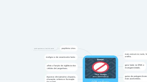 Mind Map: CCE em Gatos