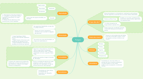 Mind Map: Fungos