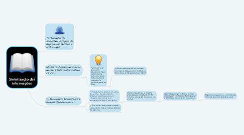 Mind Map: Sintetização das informações
