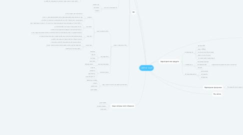 Mind Map: ЦА Рой клуб