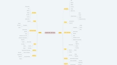 Mind Map: Candela Paz del futuro