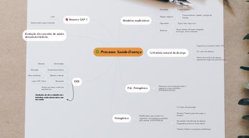Mind Map: Processo Saúde-Doença