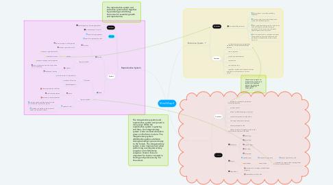 Mind Map: Mind Map 2