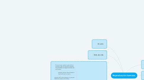 Mind Map: Reproducción humana.