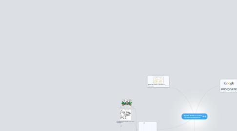 """Mind Map: """"Business Models et Création d'Entreprises Innovantes"""""""
