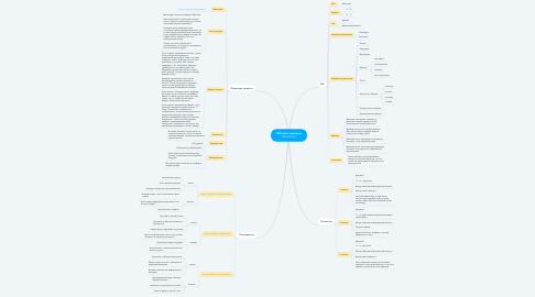 "Mind Map: Магазин одежды ""Palitralove"""