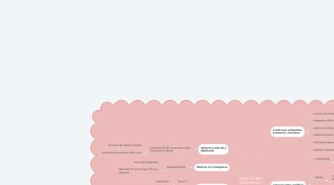 Mind Map: Aplicación Tests Psicométricos