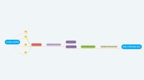 Mind Map: SACRAL NERVE