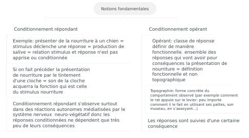 Mind Map: Notions fondamentales