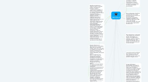 Mind Map: Organizaciones del gobierno de la UNL
