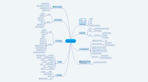 Mind Map: Projet de vie