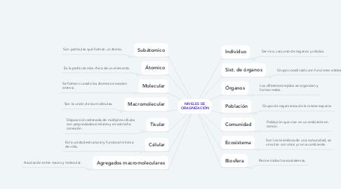 Mind Map: NIVELES DE ORAGNIZACIÓN