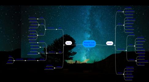 Mind Map: Ricardo José Pinto Salazar