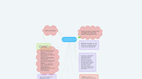 Mind Map: CONSULTORIA EN NUESTRA EMPRESA