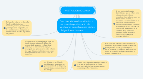 Mind Map: VISITA DOMICILIARIA