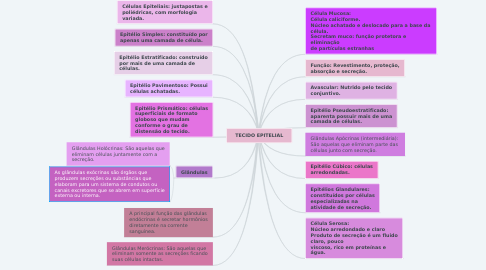 Mind Map: TECIDO EPITELIAL