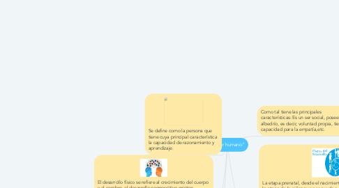 """Mind Map: """"El ser humano"""""""