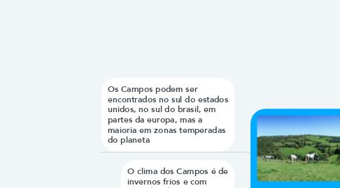 Mind Map: Campos