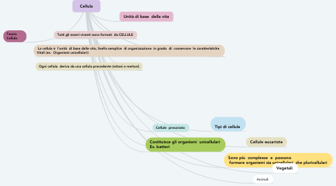 Mind Map: Cellula