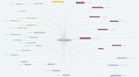 Mind Map: TIPOS DE ACUERDO O CONVENIO COMERCIAL