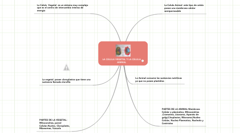 Mind Map: LA CELULA VEGETAL Y LA CELULA ANIMAL