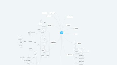 Mind Map: A&P