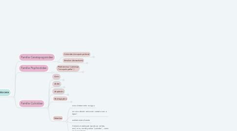 Mind Map: Ordem Diptera