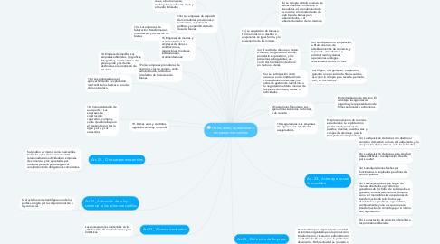 Mind Map: De los actos, operaciones y empresas mercantiles