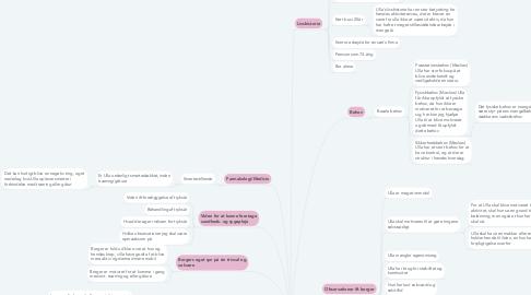 Mind Map: Læringstema 3  Rehabilitering    ULLA