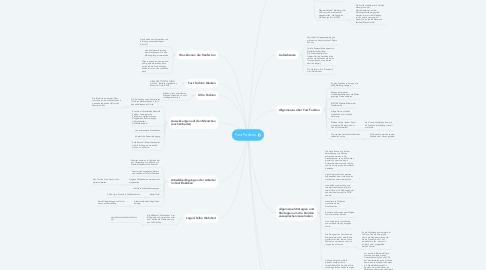 Mind Map: Fast Fashion