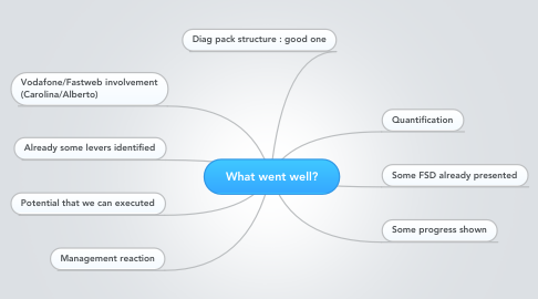 Mind Map: What went well?