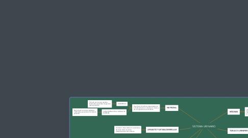 Mind Map: SISTEMA RESPIRATORIO