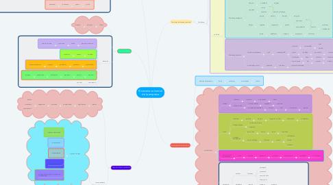 Mind Map: El sistema comercial de la empresa