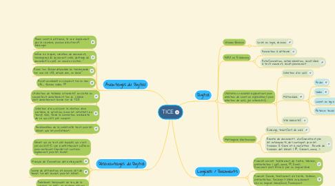 Mind Map: TICE