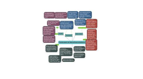 Mind Map: Funcionamento do Sistema Nervoso Autônomo