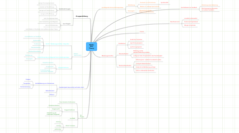 Mind Map: Media Rich Theory