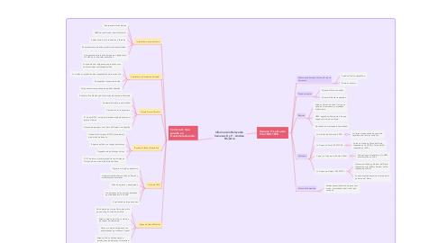 Mind Map: Información Relevante Semanas 8 y 9 - Andrea Silvestre