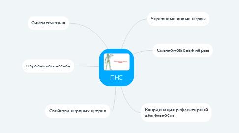 Mind Map: ПНС