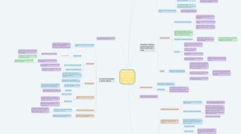 Mind Map: PROGRAMA DE REFORMA DEL SECTOR SALUD 1995-2000