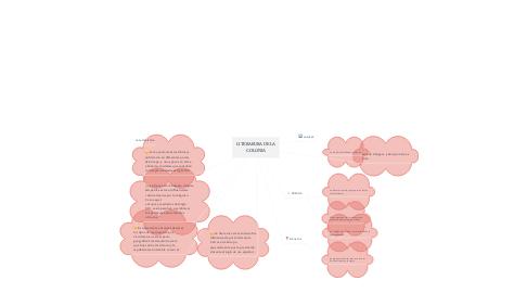 Mind Map: LITERARURA DE LA COLONIA