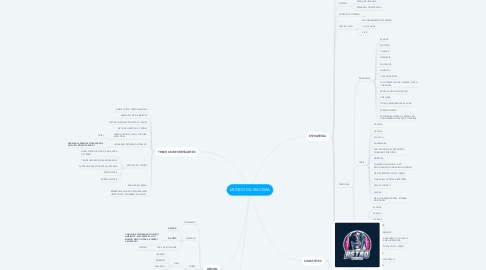 Mind Map: MUNDO DA IRACEMA
