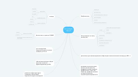 Mind Map: Концепция ПМСП
