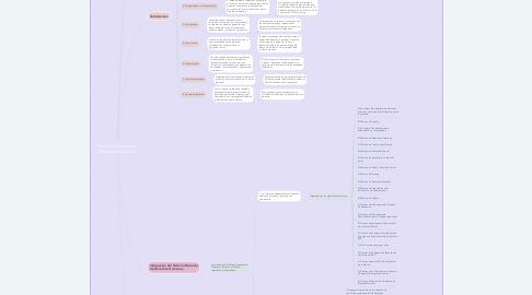 Mind Map: Sistema Nacional de Derechos Humanos.