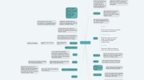 Mind Map: Célula Eucarionte