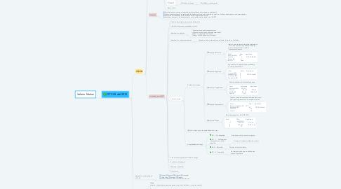Mind Map: Valerin Muñoz