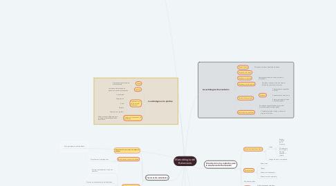 Mind Map: Metodología del Baloncesto