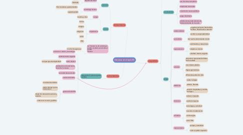 Mind Map: literatura en el siglo XX