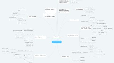 Mind Map: COSTOS Y PRECIOS